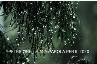 petricore odore pioggia sul terreno
